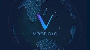 Investing in VeChain: the bull and the bear case (February 2019)